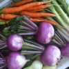 Söker duktiga grönsaksodlare